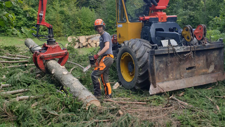 Spravilo lesa